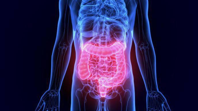 'Dead' Probiotic Treatment May Help Reduce Irritable Bowel Symptoms