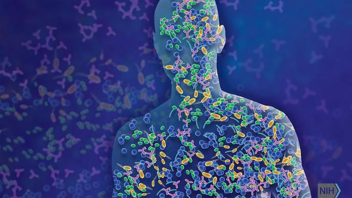 "NIH Scientists Describe ""Multi-Kingdom Dialogue"" Between Internal, External Microbiota"