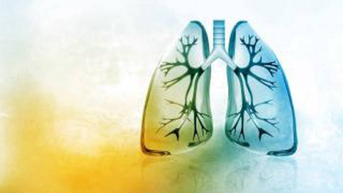 Immunotherapy Shows Potential in Treating Lung Fibrosis