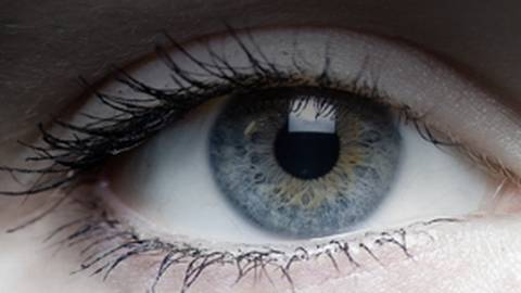 Rapid Eye Movement:The Gateway to New Insights in Autism?