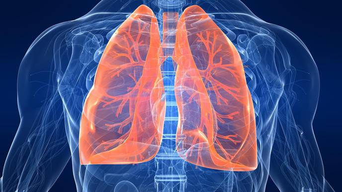 Stopping Lethal Lung Damage from the Flu with a Natural Human Protein
