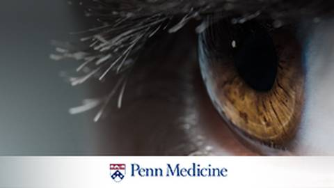 Curing Blindness: How Researchers are Utilizing Gene Therapy